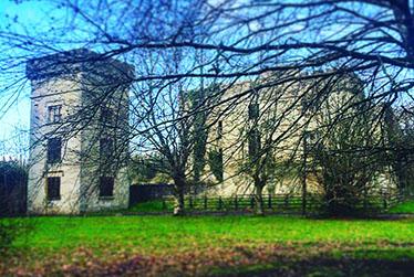 Donadea Castle x